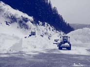 Photo of snowplows clearing snowy road